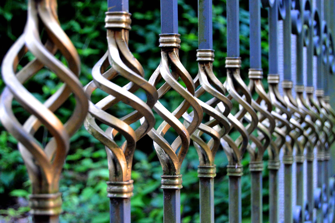 Figtree iron fence